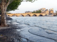 Paris should prepare now for risk of a costly Seine flood
