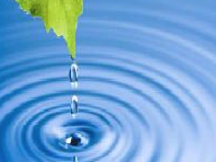 Environmental Risk Management Webinar